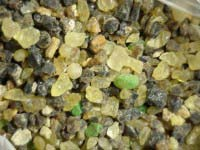 <b>Forest Resin 1 oz. </b>